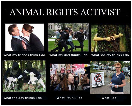 animal-rights-activists-lizette